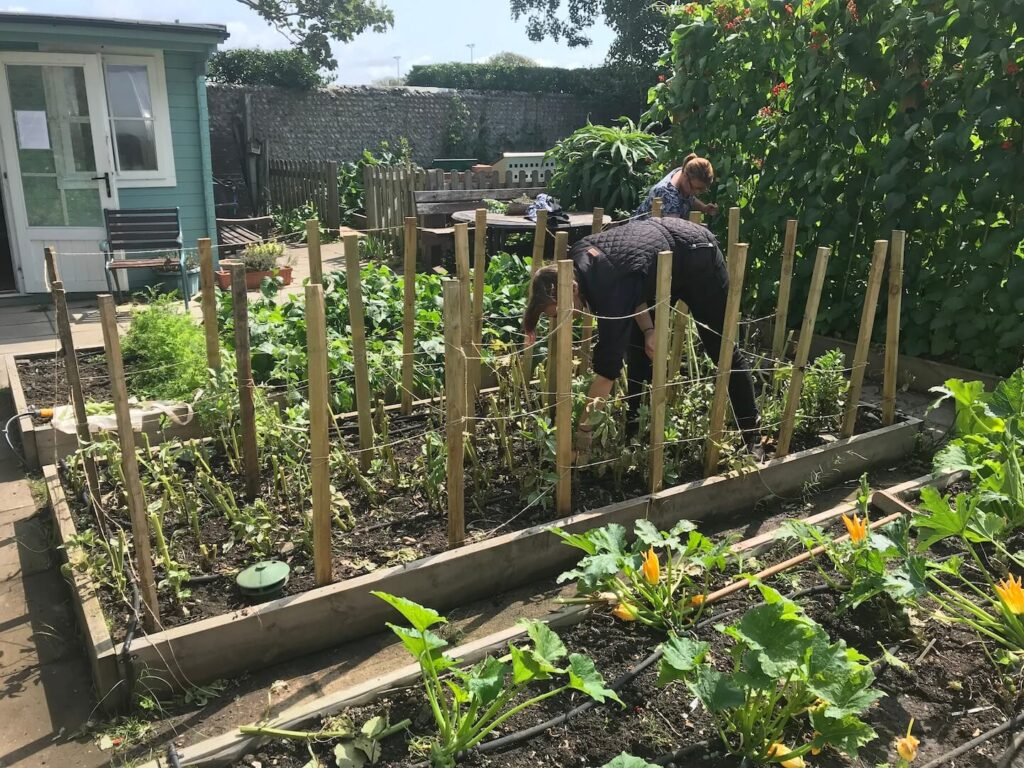 Seaford Community Garden.